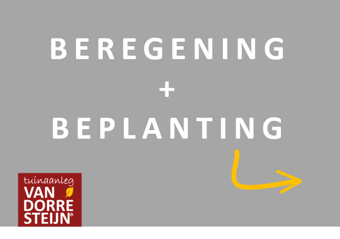 Beregening en beplanting tuinaanleg van dorresteijn