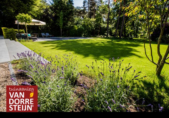 Tuin met gras voorbeeld tuinaanleg van Dorresteijn